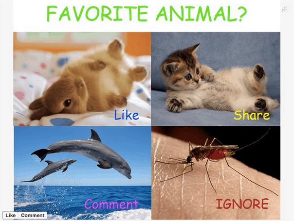 El algoritmo de Facebook penaliza publicaciones de Fan Page que pidan en forma explícita acciones de Like, Share y Comments para reducir el spam en los News feeds.
