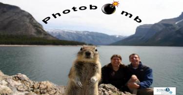 Photobomb imagen para artículo AL
